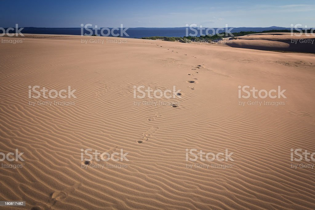 Sand dunes in sunset royalty-free stock photo