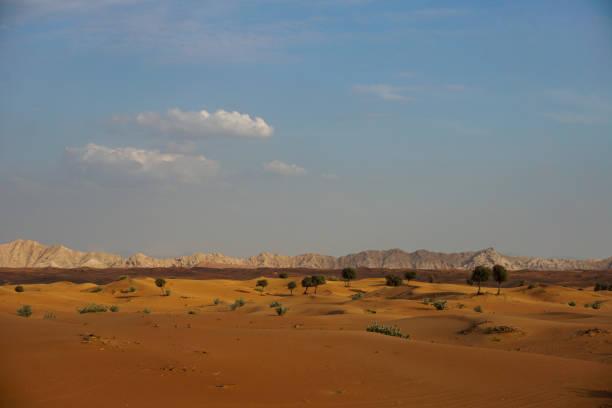 Sanddünen in der Wüste von dubai – Foto
