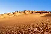 Desert Safari in the desert