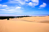 Woahink Lake, OR, USA - July 13, 2015: Sand Dunes in the Jessie Honeyman State Park at Woahink Lake in Oregon