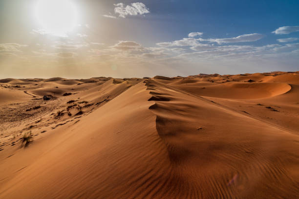 sand dunes in the sahara desert - morocco - desert stock pictures, royalty-free photos & images