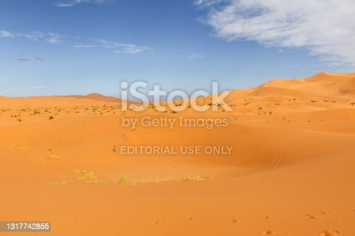 Errachidia Province, Morocco - October 17, 2015: Sand dunes in the Sahara Desert. lonely man walks on the sand. Erg Chebbi.