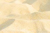 Sand dunes in the summer sun. Full frame background
