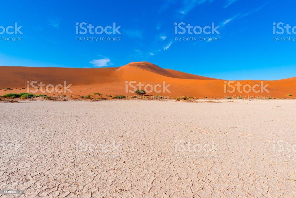 Sand dunes Namib desert, salt flat, roadtrip in the wonderful Namib Naukluft National Park, travel destination in Namibia, Africa. stock photo