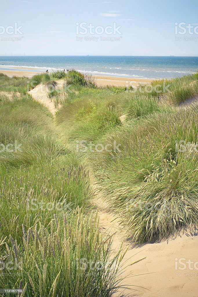 Sand Dunes Of Formby Beach Near Liverpool Uk Stock Photo Download Image Now Istock