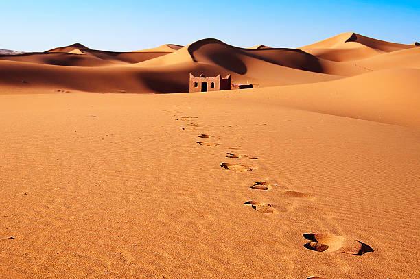 사하라 사막 모래 언덕에서 - 사구 지형 뉴스 사진 이미지