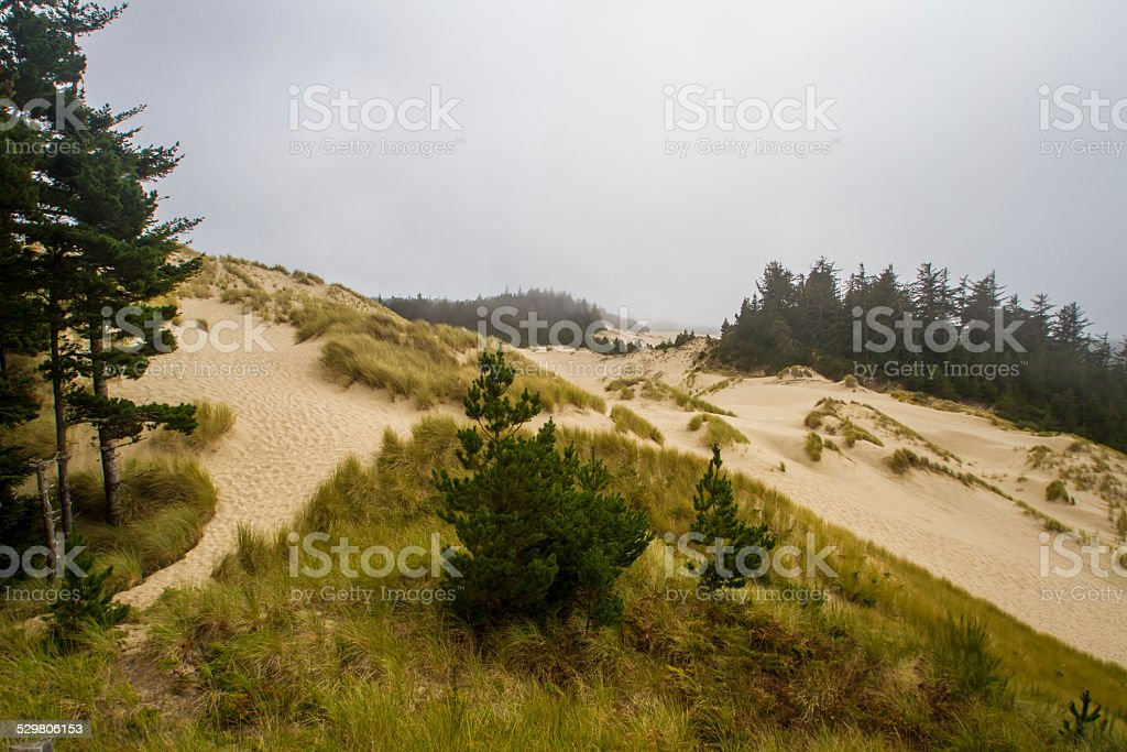 Sand Dunes on a Cloudy Day stock photo