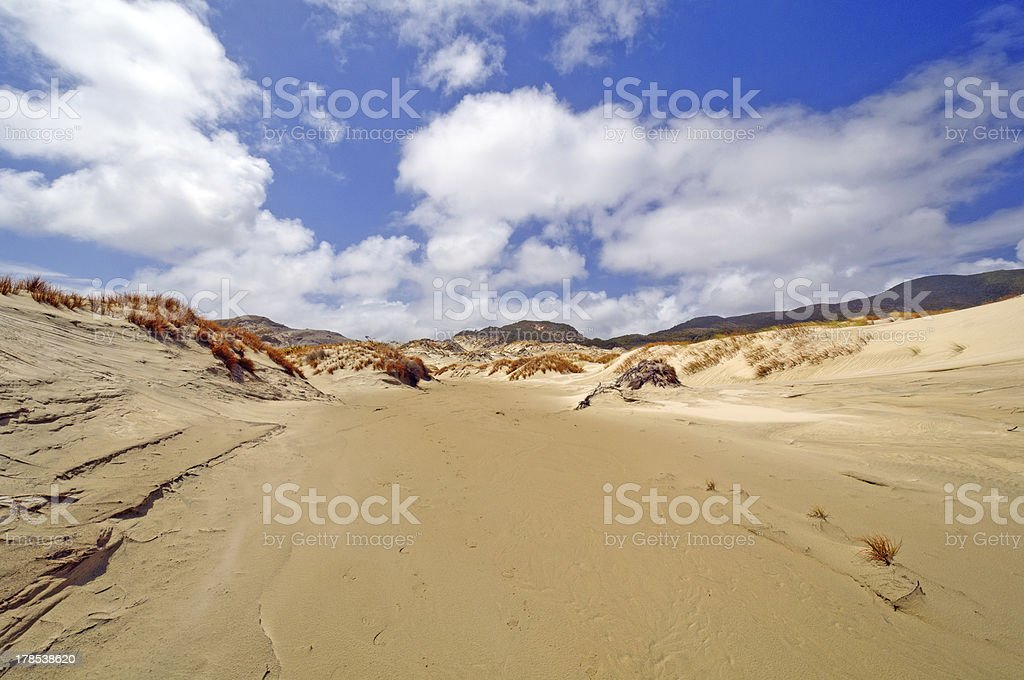 Sand Dunes on a Remote Shore stock photo