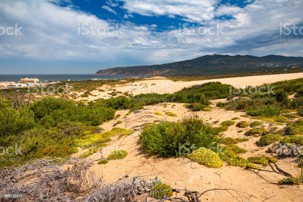 Sanddünen am Guincho Strand nahe Atlantikküste.  Portugal. – Foto