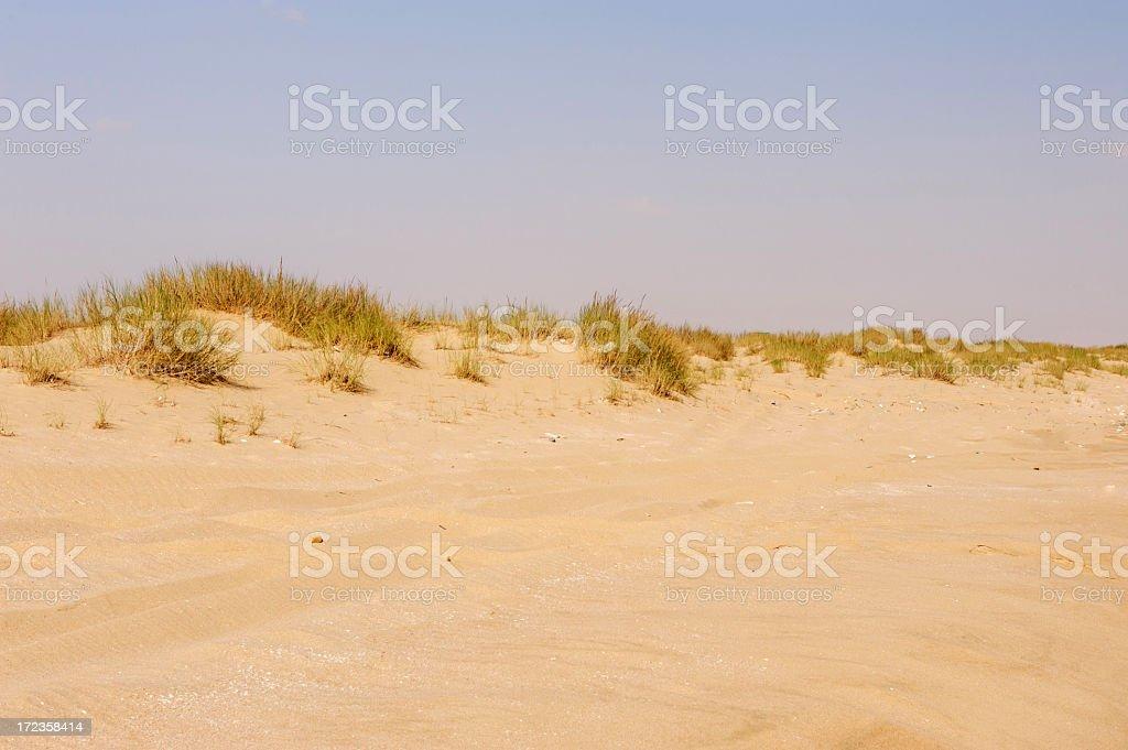Dunas de Sand foto de stock libre de derechos
