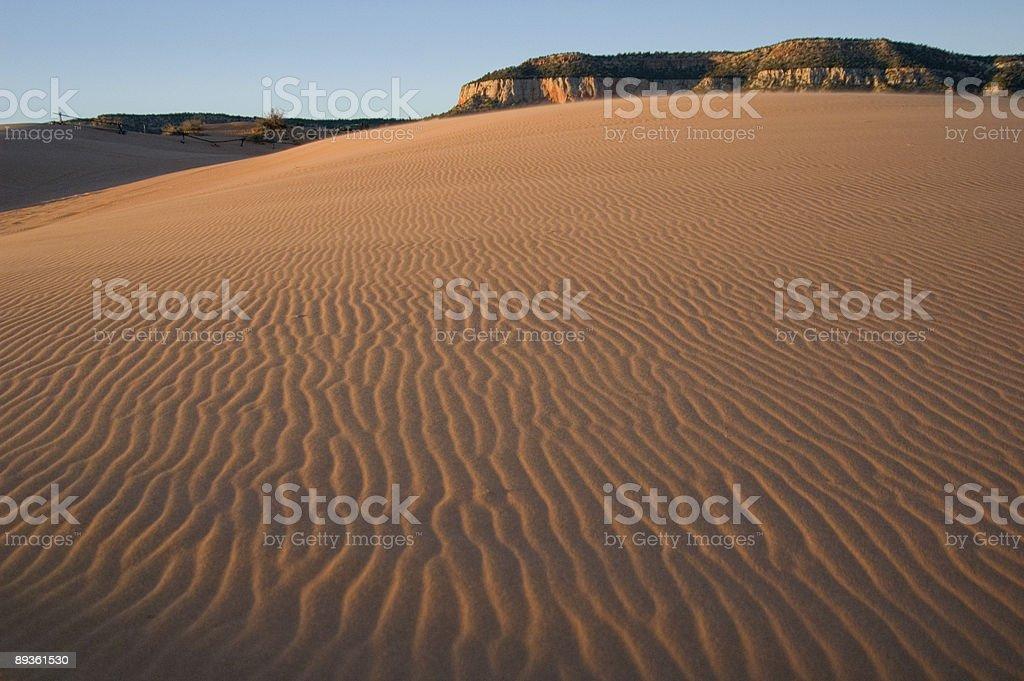 Sand dunes zbiór zdjęć royalty-free