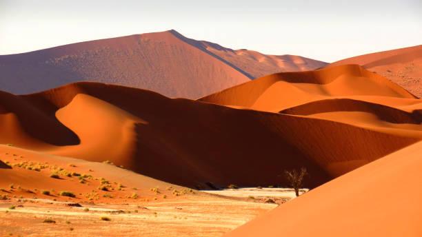 sand-dünen sossusvlei namibia afrika trocken heißen trockenen - namib wüste stock-fotos und bilder