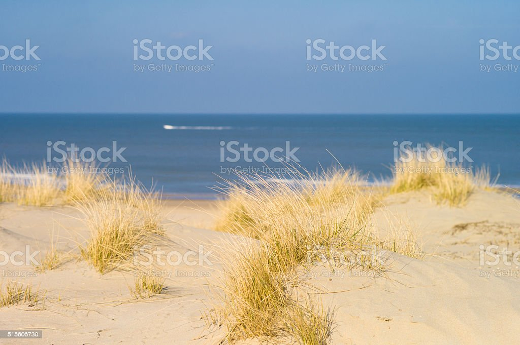 Sand Dunes, The Hague, The Netherlands stock photo