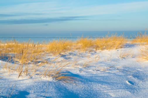 Sand dunes under the snow