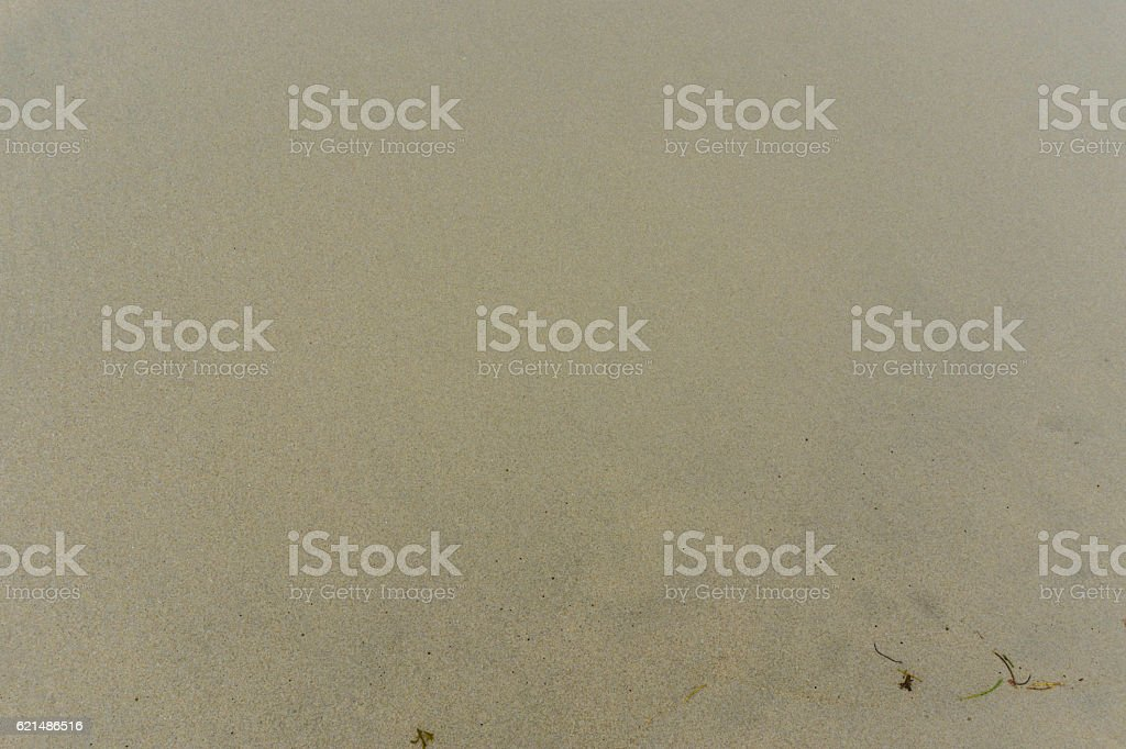 sand from beach background foto stock royalty-free