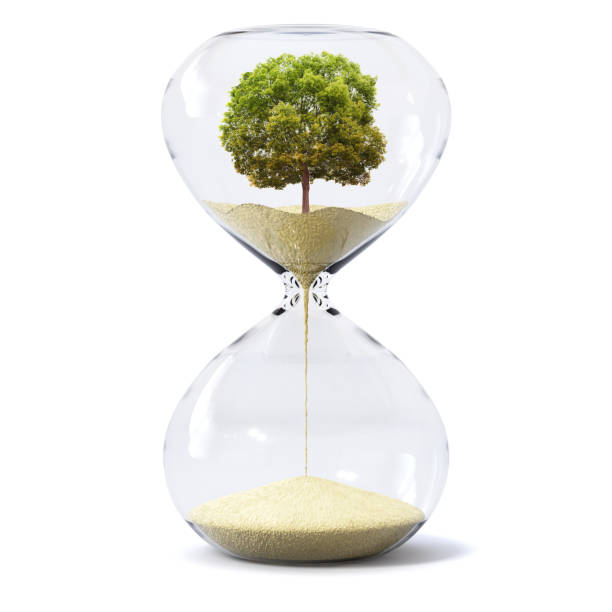 sand glass or sand watch concept art about climate change, disappearing nature by time - climate clock imagens e fotografias de stock