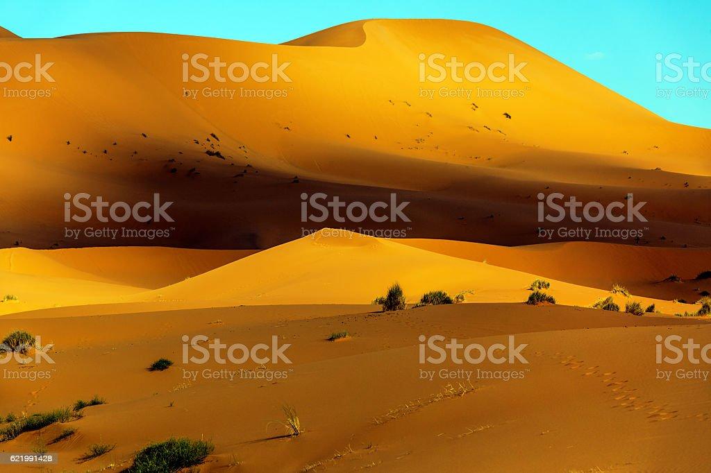 Sand dunes in Erg Chebbi Sand Dunes,Sahara desert,Merzouga, Morocco,...