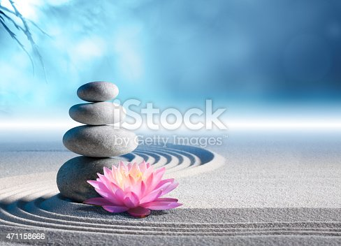 pink water lily in rock garden - meditation of soul