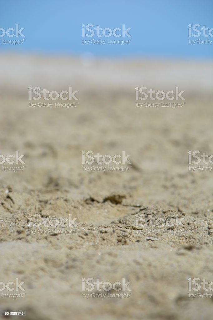 Sand on the beach royalty-free stock photo