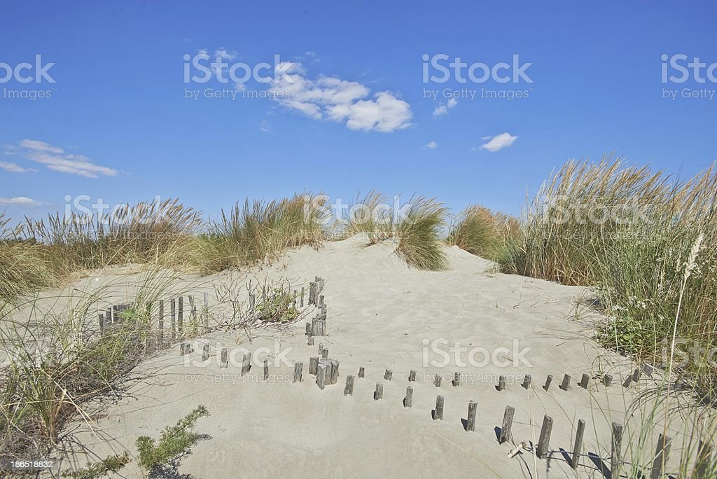 Sand path on the beach, France, HDR royalty-free stock photo
