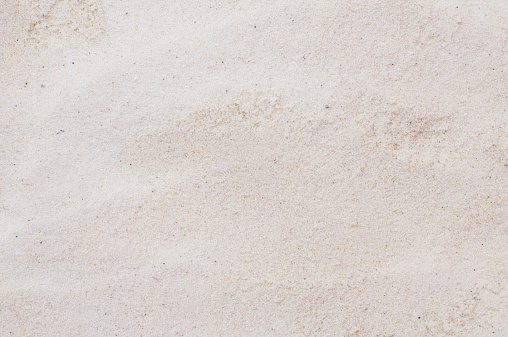 Grains of sand.