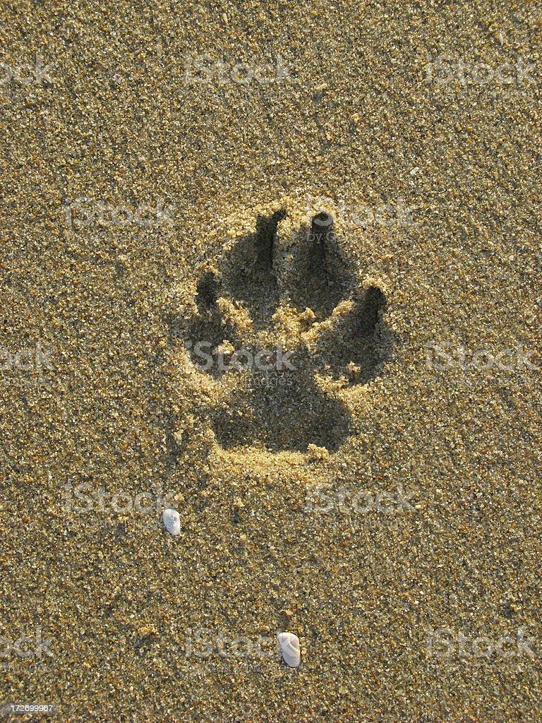Sand Print royalty-free stock photo
