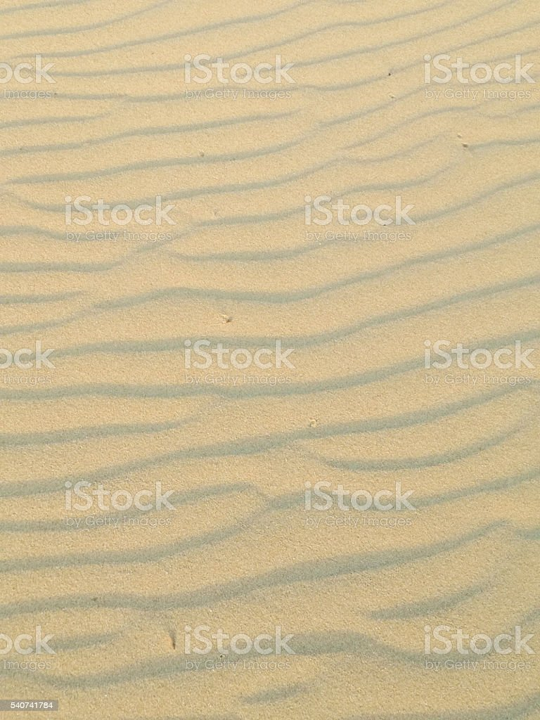 Sand Texture. Gold sand. Background from fine sand. Sand background stock photo