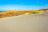 Sand textures at Grey Dunes, Dead Dunes at the Curonian Spit in Neringa, Lithuania