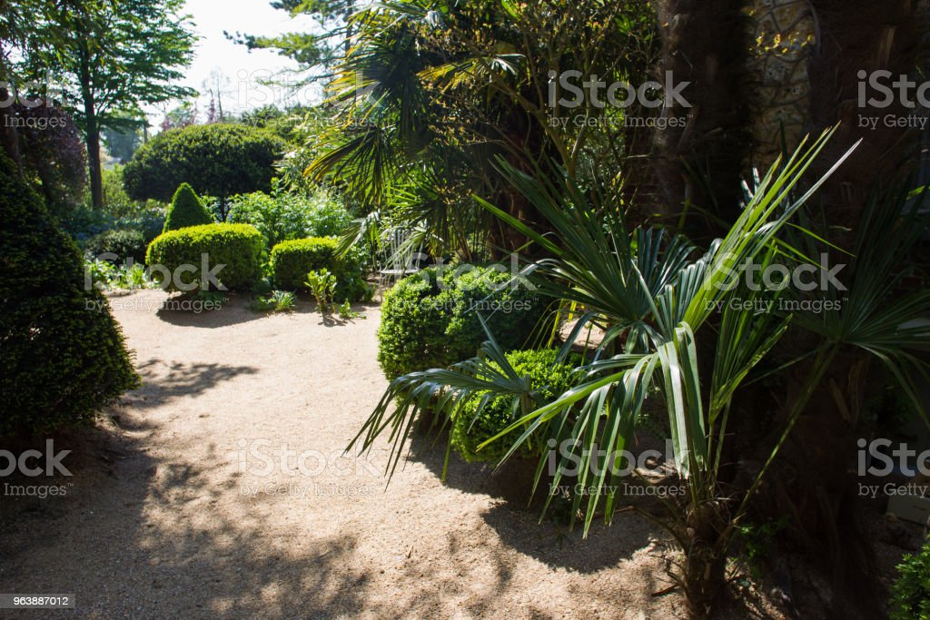 sand track in Agapanthe - Royalty-free Antique Stock Photo