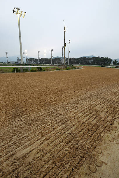 Sand Track Sand Track sha tin stock pictures, royalty-free photos & images