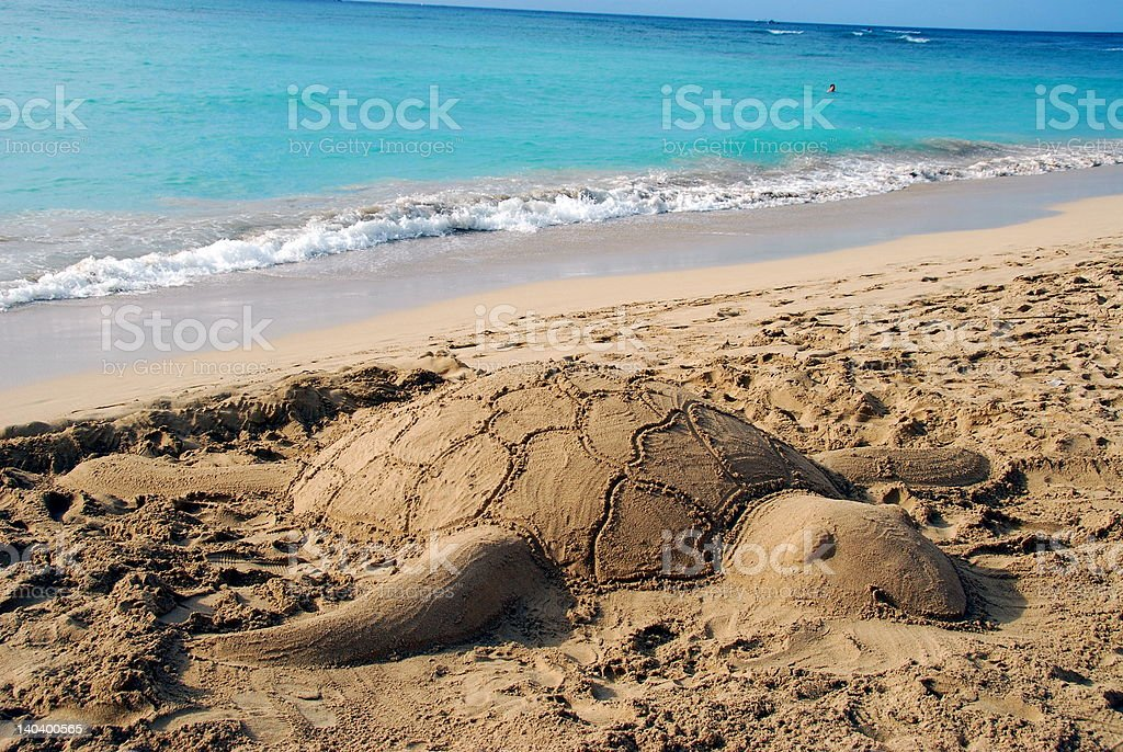 'Sand Turtle' in paradise stock photo