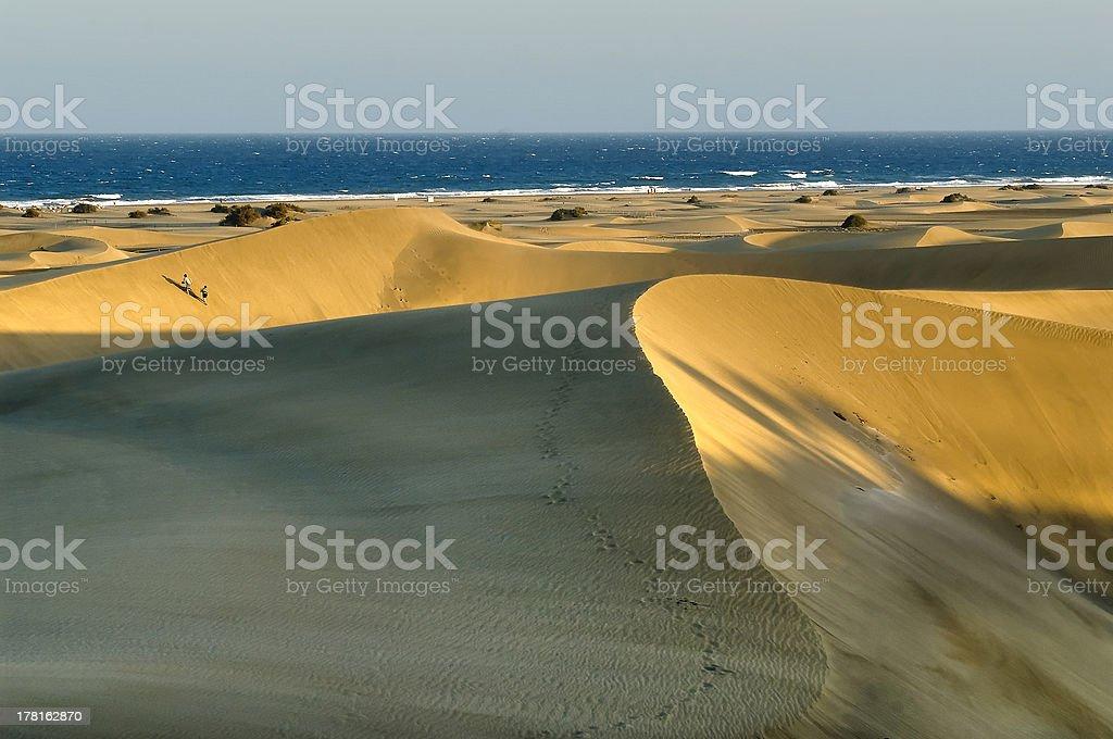 Sand walkers Maspalomas – Foto