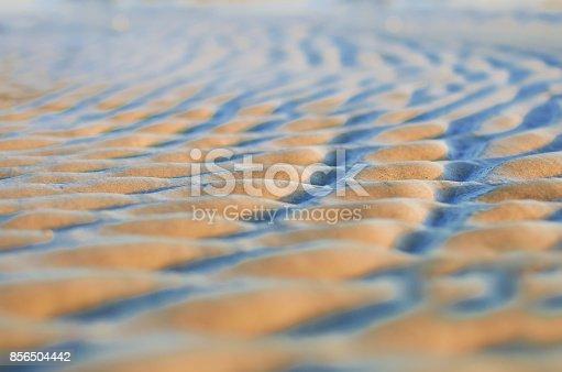 istock Sand waves pattern 856504442