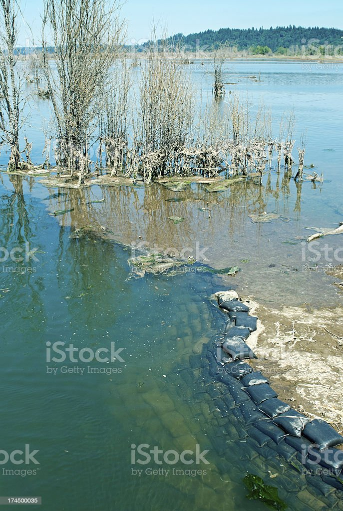 Sandbags lining channel in restored estuary of delta royalty-free stock photo