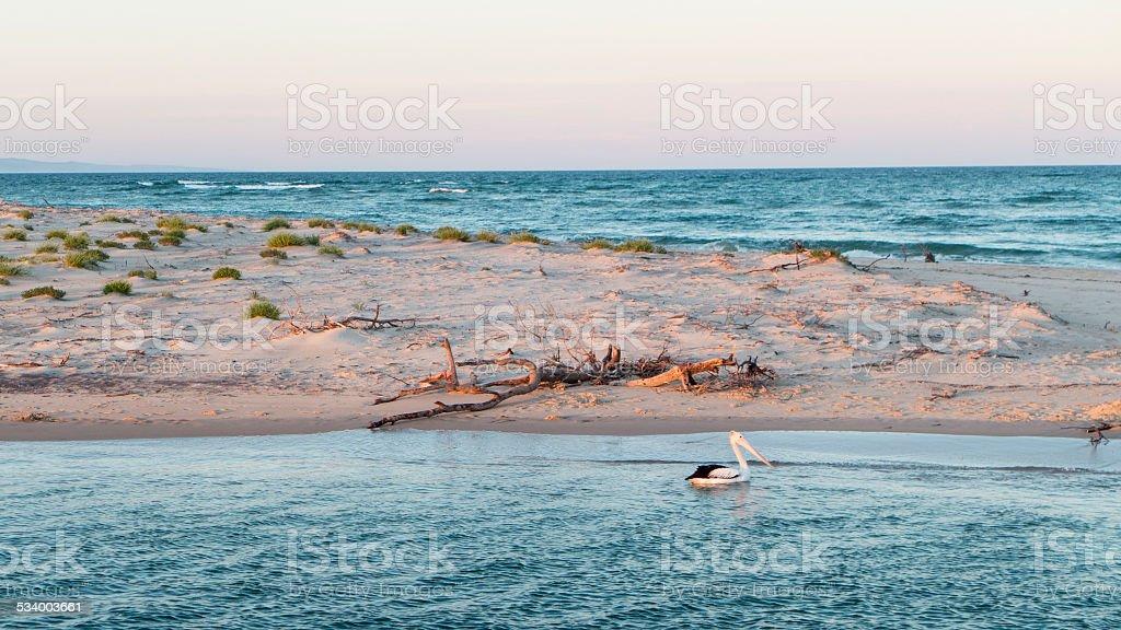 Sandbank on the Noosa River, Queensland, Australia stock photo