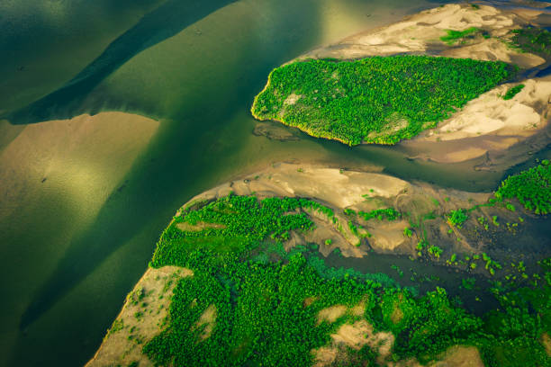 sandbars in river of lower zambezi area in Zambia, Africa stock photo