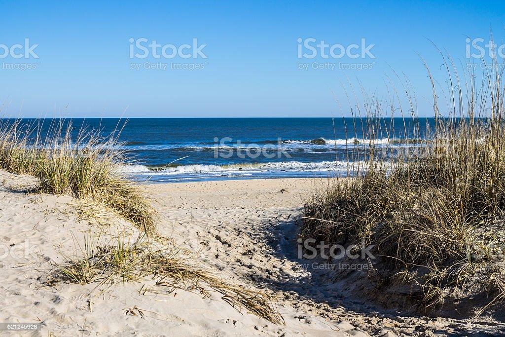 Sandbridge Beach in Virginia Beach, Virginia with Grass on Dunes stock photo