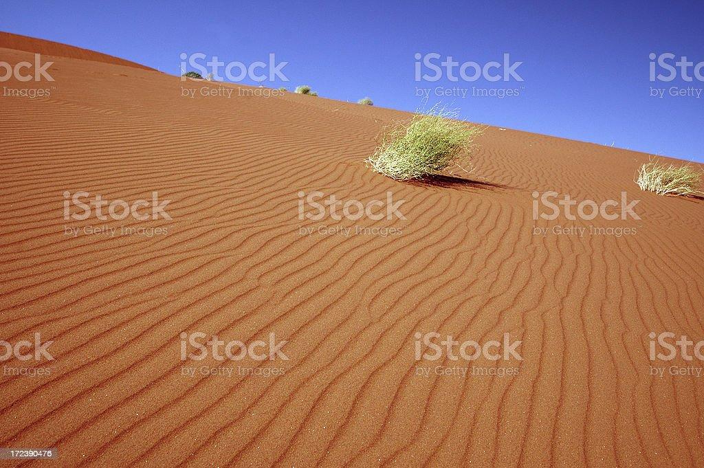 Sands of Sossusvlei royalty-free stock photo