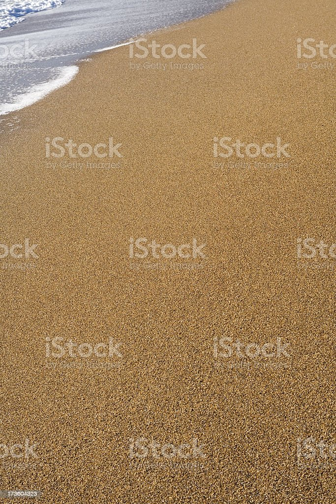 sand,shells,pebbles  and driftwood series royalty-free stock photo