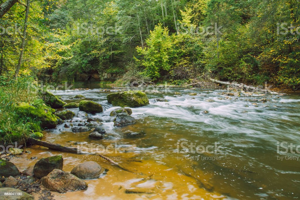 Sandstone cliffs on the river shore in the Gaujas National Park. 2012 royalty-free stock photo