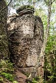istock sandstone rock with trees around in CHKO Kokorinsko in Czech republic 942525898