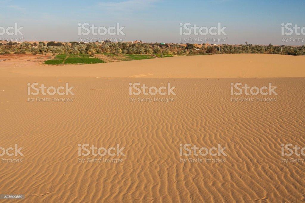 Sandunes in Dakhla oasis. stock photo