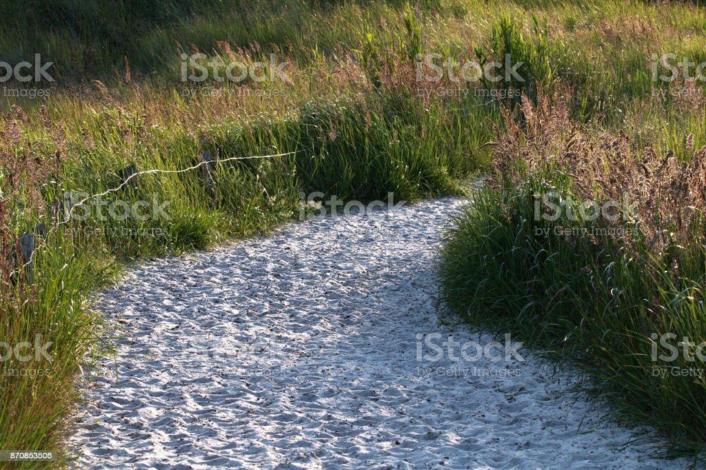 Sandweg im Naturschutzgebiet stock photo
