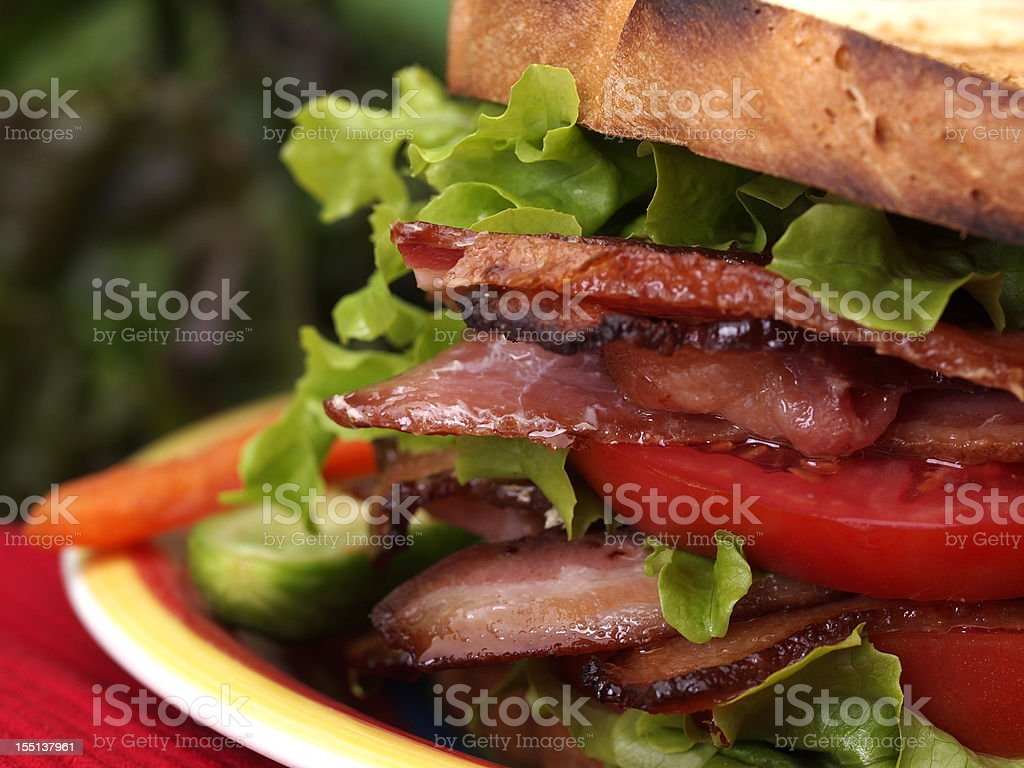 BLT sandwich on toast stock photo