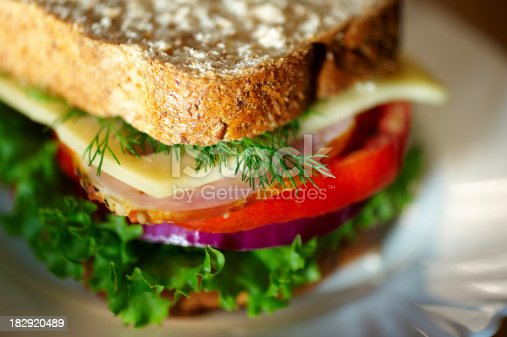 Close up of sandwich. Shalow DOF. Selective focus.