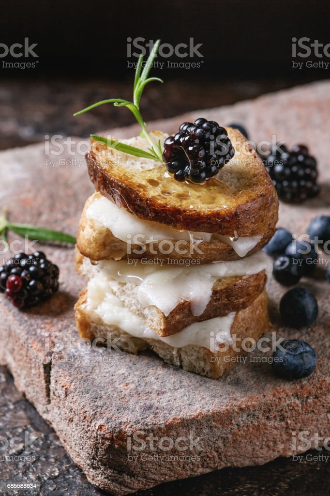 Sandwich with goat cheese and berries foto de stock royalty-free