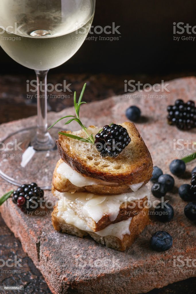 Sandwich with goat cheese and berries royalty-free 스톡 사진