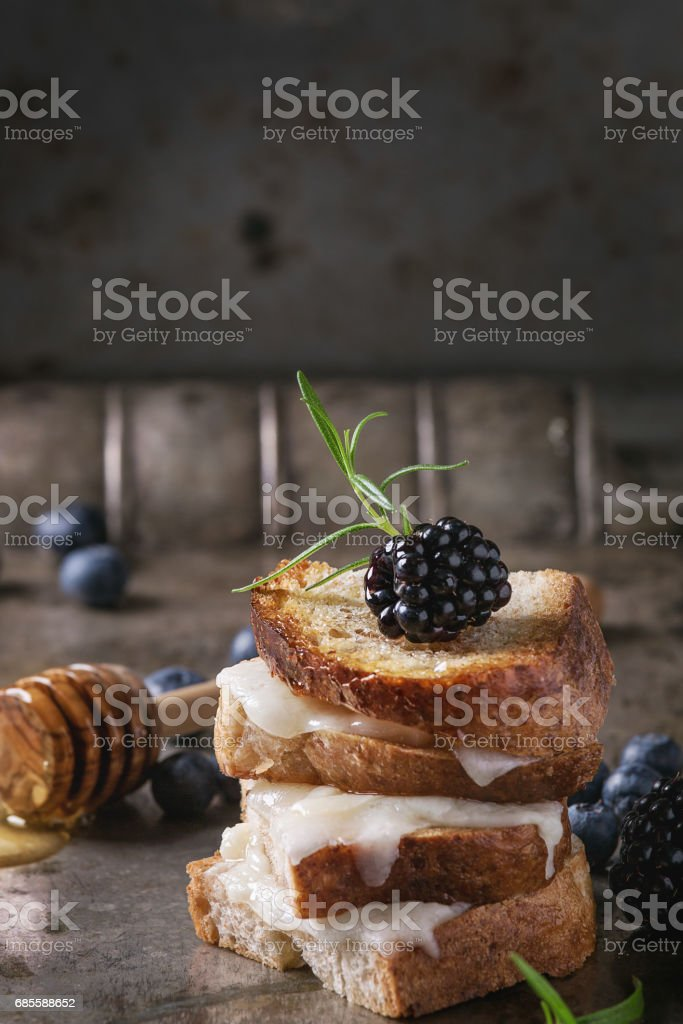 Sandwich with goat cheese and berries 免版稅 stock photo