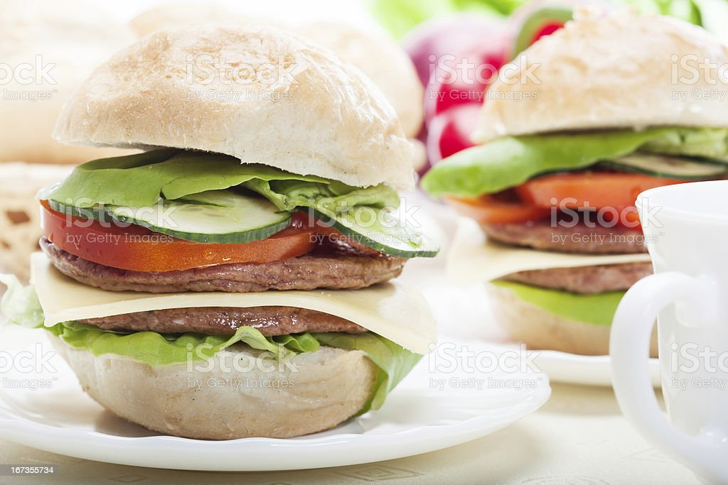 Sandwiches on plate royalty-free stock photo