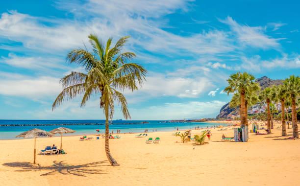 Sandy and beautiful Teresitas beach in Tenerife